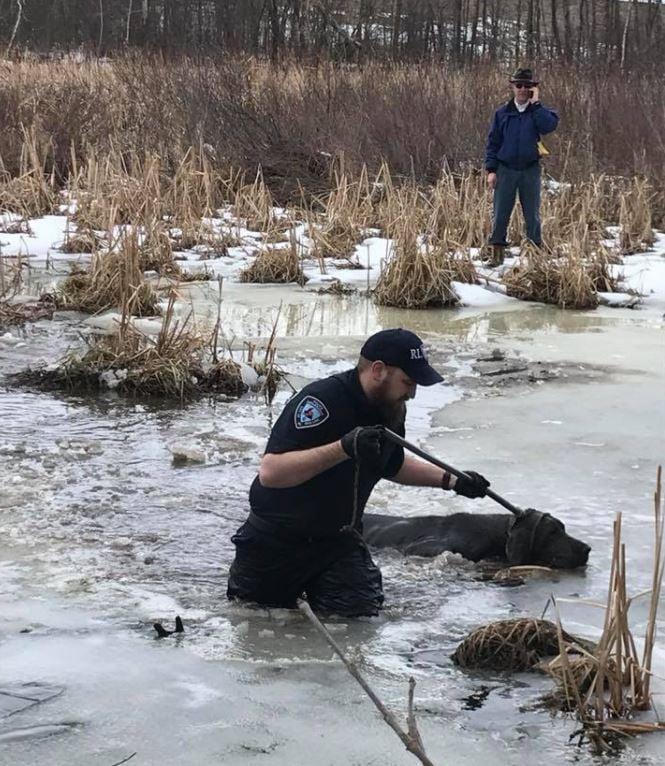 Rice Lake Police