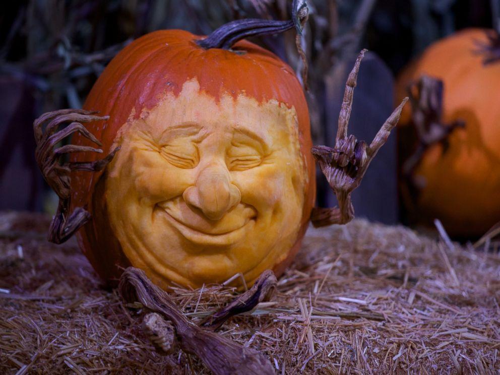 Inside enchanted garden pumpkin carving wqow tv eau