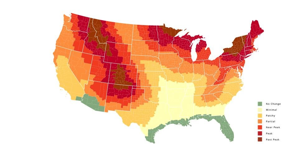 Best Time To View Fall Foliage In Wisconsin Quickly Approaching - Time change map us